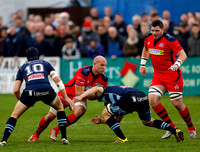 Bedford Blues v Bristol Rugby