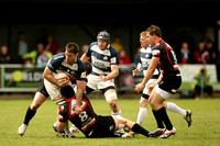 Cornish Pirates v Bristol (3)-10
