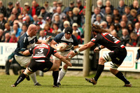 Cornish Pirates v Bristol (3)-9