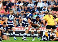 Bristol Rugby v Cornish Pirates