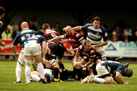 Cornish Pirates v Bristol (3)-2