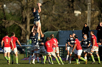 London Welsh v Bristol-4